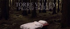 attic torre valley pillow therapy